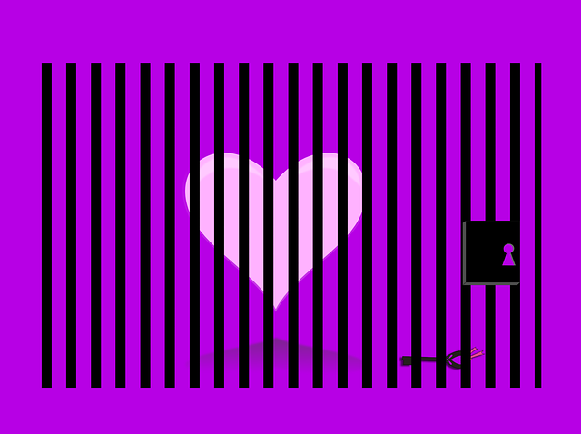 heart-642154_640.png